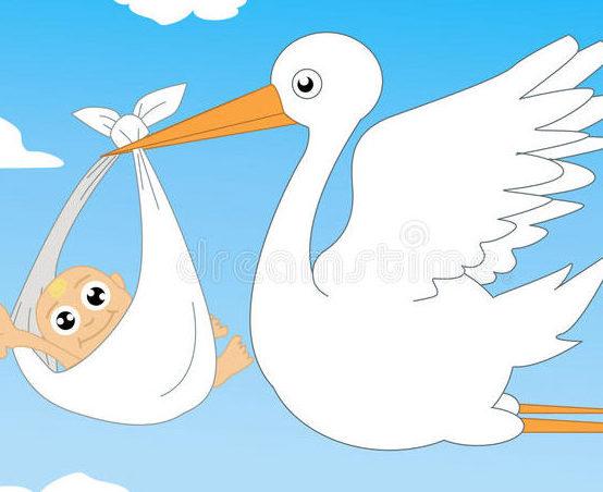 FIMMG CA Cuneo: firmato Accordo Aziendale per la tutela della maternità